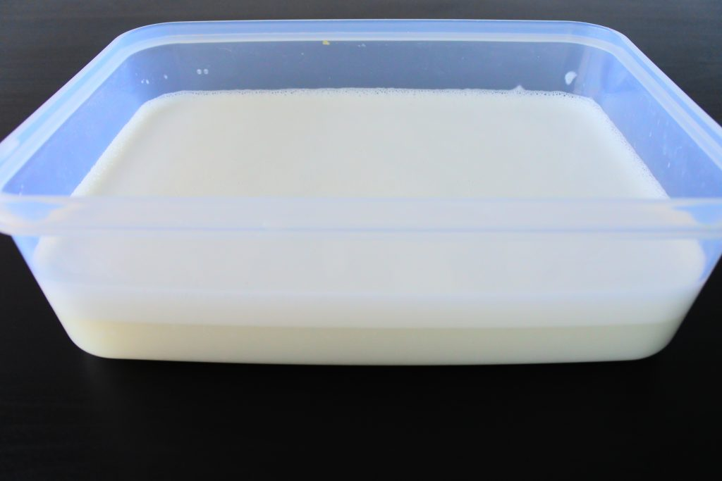 An angled head on image of a container of freshly made coconut milk separating into cream and liquid after resting