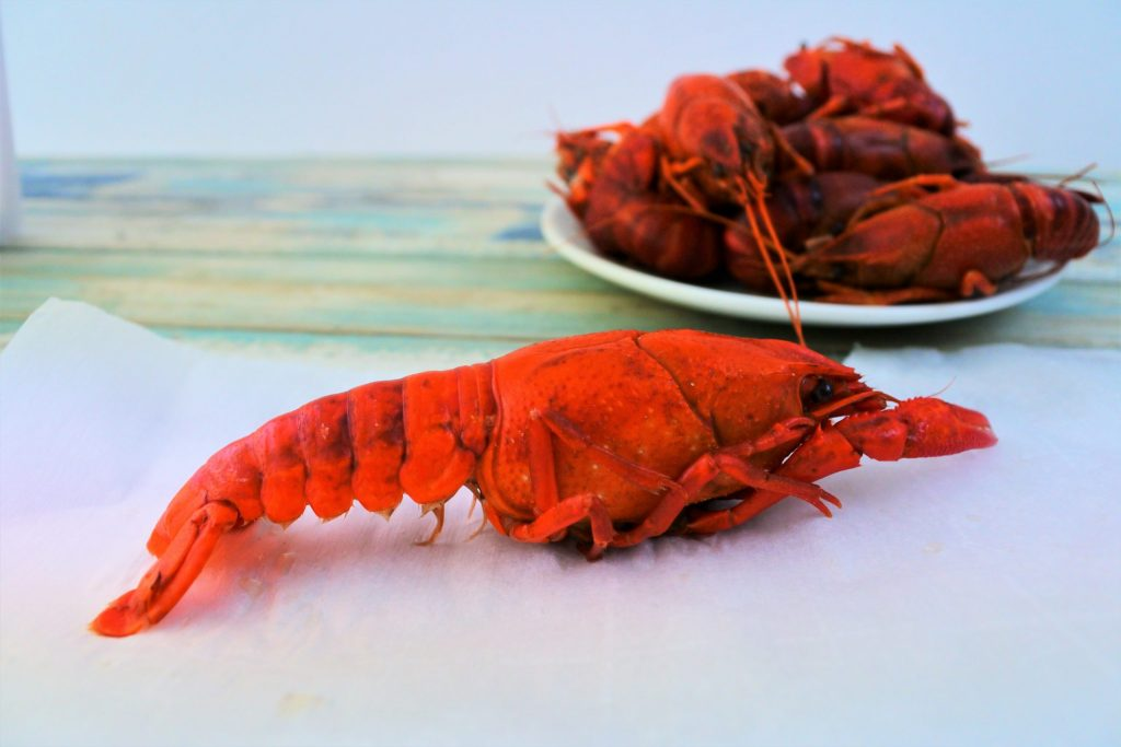 A close up image of a cooked crawfish with a plate of crawfish in the background