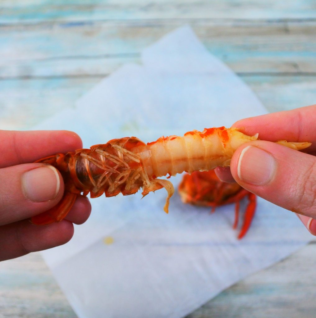 An over head image of the meat of a crawfish being removed from the tail