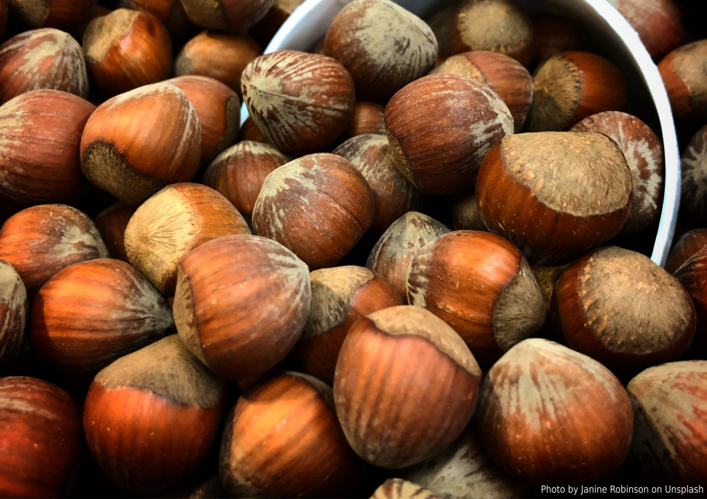 An angled stock image of hazelnuts in their shell being scooped up with a measuring scoop